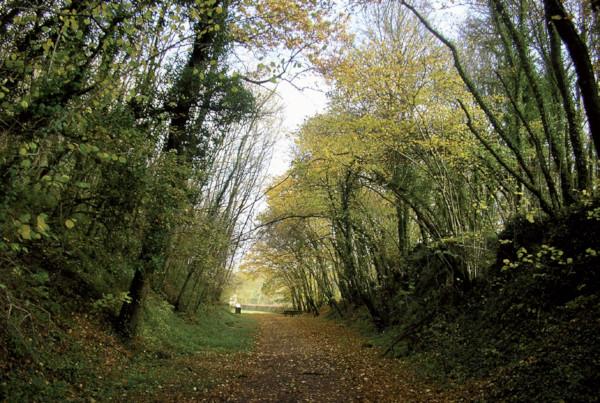 Chemin de randonnée passant devant les Fours à Chaux